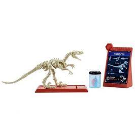 Jurský svět Dino kostry Velociraptor