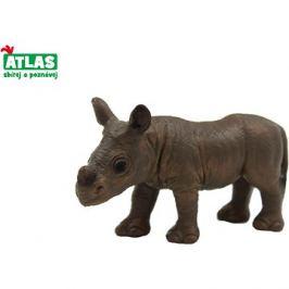 Atlas Nosorožec mládě