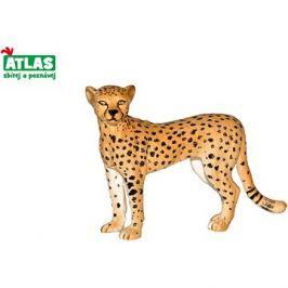 Atlas Gepard