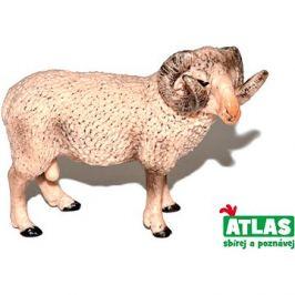 Atlas Beran