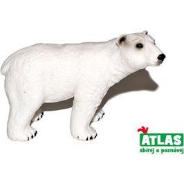 Atlas Medvěd lední