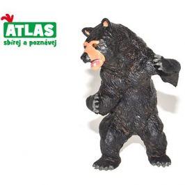 Atlas Medvěd baribal