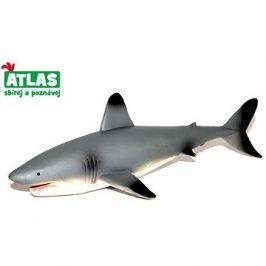 Atlas Žralok