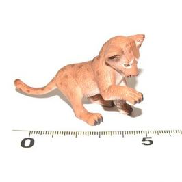 Atlas Lev mládě