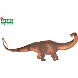 Atlas Apatosaurus