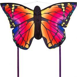 Invento Motýl duhový