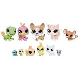 Littlest Pet Shop Velké balení zvířátek - Domácí mazlíčci