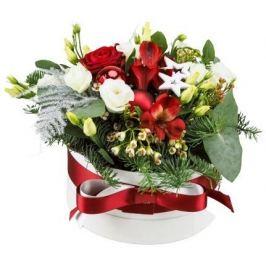 Belles Fleurs Vánoční krabička červená