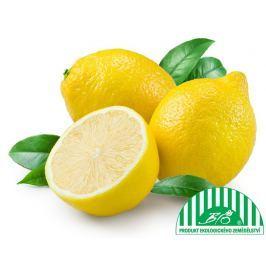 Citron BIO, síť