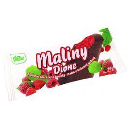 Dione Maliny v kakaové polevě