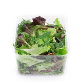 Mesclun mix salátů, vanička