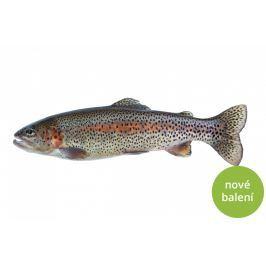 Pstruh duhový kuchaný Celé ryby