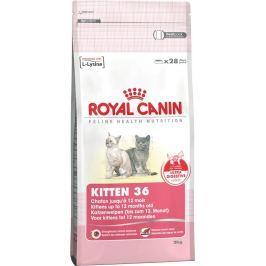 Royal Canin Kitten 36 Granulovaná krmiva