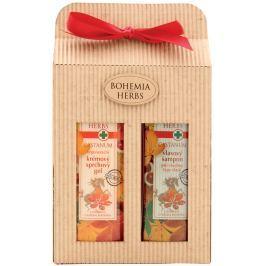 Bohemia Gifts & Cosmetics Castanum Extrakt z kaštanu koňského sprchový gel 250 ml + šampon na vlasy 250 ml, kosmetická sada