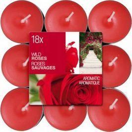 Bolsius Aromatic Wild Rose - Divoká Růže vonné čajové svíčky 18 kusů, doba hoření 4 hodiny