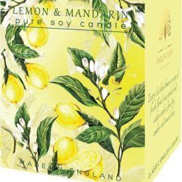 English Soap Citron & Mandarinka sojová vonná svíčka 170 ml, hoří až 35 hodin
