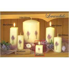 Lima Květina Levandule vonná svíčka slonová kost s obtiskem levandule krychle 45 x 45 mm 1 kus