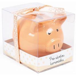 Albi Pokladnička prasátko malé Pro skvělou kamarádku oranžová 7 cm × 6,5 cm × 7,3 cm