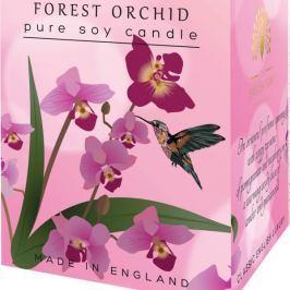 English Soap Lesní Orchidej sojová vonná svíčka 170 ml, hoří až 35 hodin