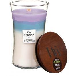 WoodWick Trilogy Calming Retreat - Uklidňující a relaxační vonná svíčka s dřevěným knotem a víčkem sklo střední 275 g