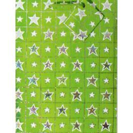 Nekupto Dárková papírová taška střední 23 x 18 x 10 cm Vánoční, zelená, hologramová 016 50 GM