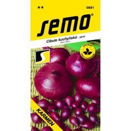 Semo Cibule kuchyňská jarní Karmen 2 g Semena