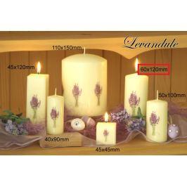 Lima Květina Levandule vonná svíčka slonová kost s obtiskem levandule válec 60 x 120 mm 1 kus Drogerie