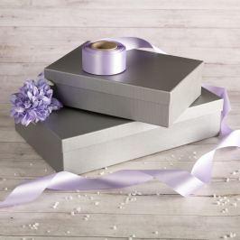 Dárková krabice Max, stříbrný natur velikosti krabice Max: 10 - 26x17x7 cm