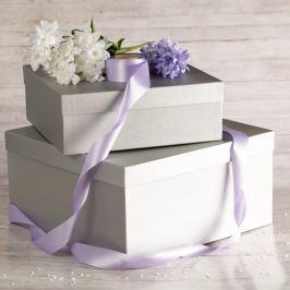 Dárková krabice Marta, stříbrný natur velikosti krabice Marta: 1 - 33x33x12 cm