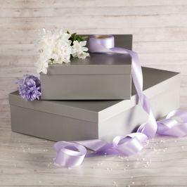 Dárková krabice Lukáš, stříbrný natur velikosti krabice Lukáš: 3 - 41x29x11,5 cm