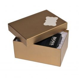 Box Hana 1 zlatý natur 18x12,5x8 cm se jmenovkou a hedvábným papírem