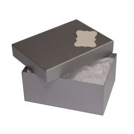 Box Hana 1 stříbrný natur 18x12,5x8 cm se jmenovkou a hedvábným papírem